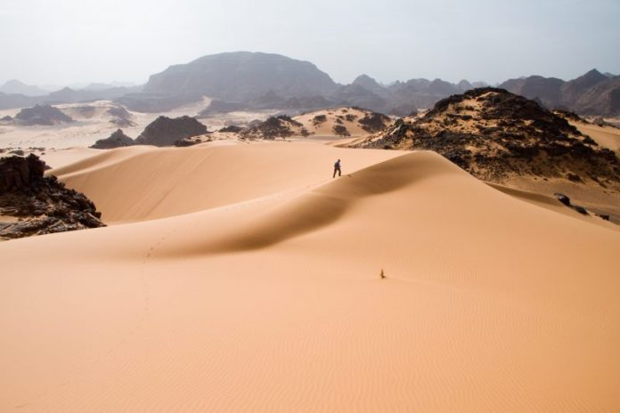 How nomadic herders in Mali rely on satellites to spot water and vegetation in the desert