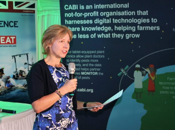 Satellite-based Pest Monitoring Cuts Losses For Farmers In Kenya