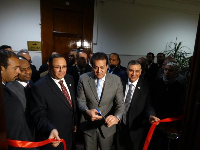 Egyptian Centre for Excellence