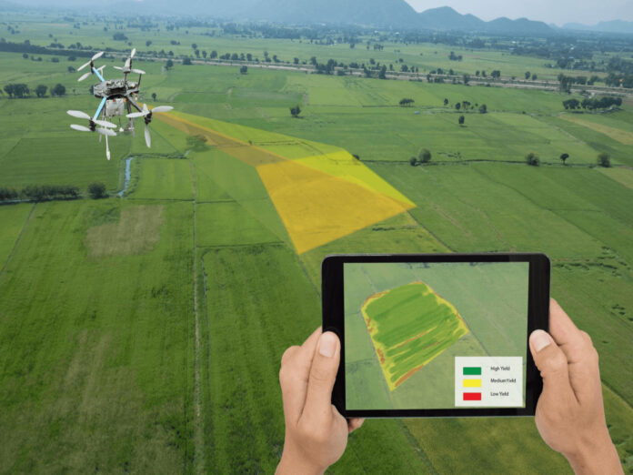 AgriEdge's Satellite-based Precision AgricTech Platform Is Boosting Productivity For African Farmers