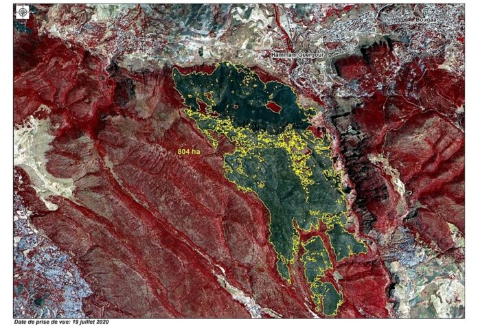 Estimation of forest areas covered by fire by Alst-2B image - Hammam Guergour –Wilaya de Sétif, July 2020