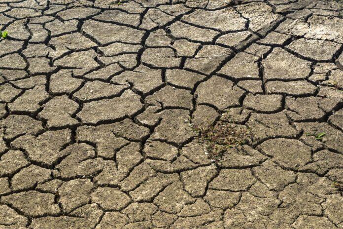 rainy season onset date early indicator of drought
